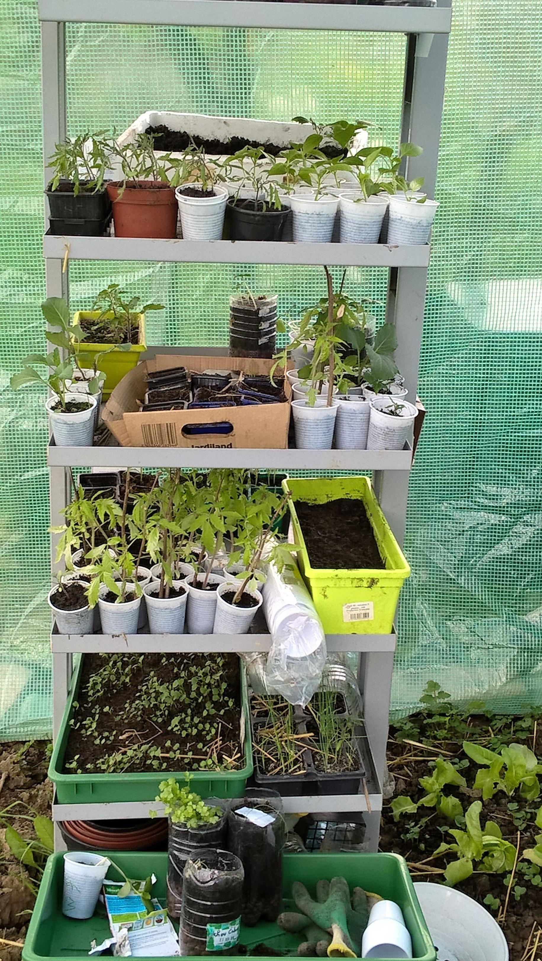 Des nouvelles du jardin en avril gogwen72 le jardinier for Pro du jardin